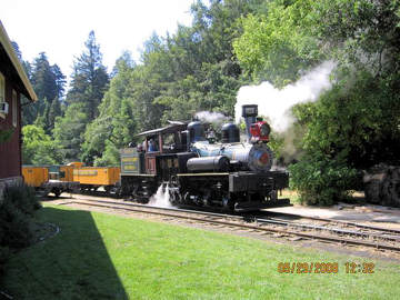 Roaring Camp RR. Photo by the Keatings May, 2008